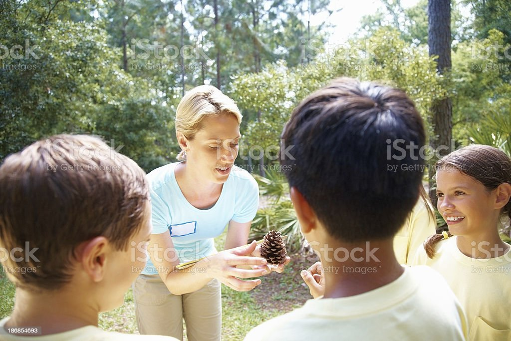 Teacher explaining about pinecone to students at a forest royalty-free stock photo
