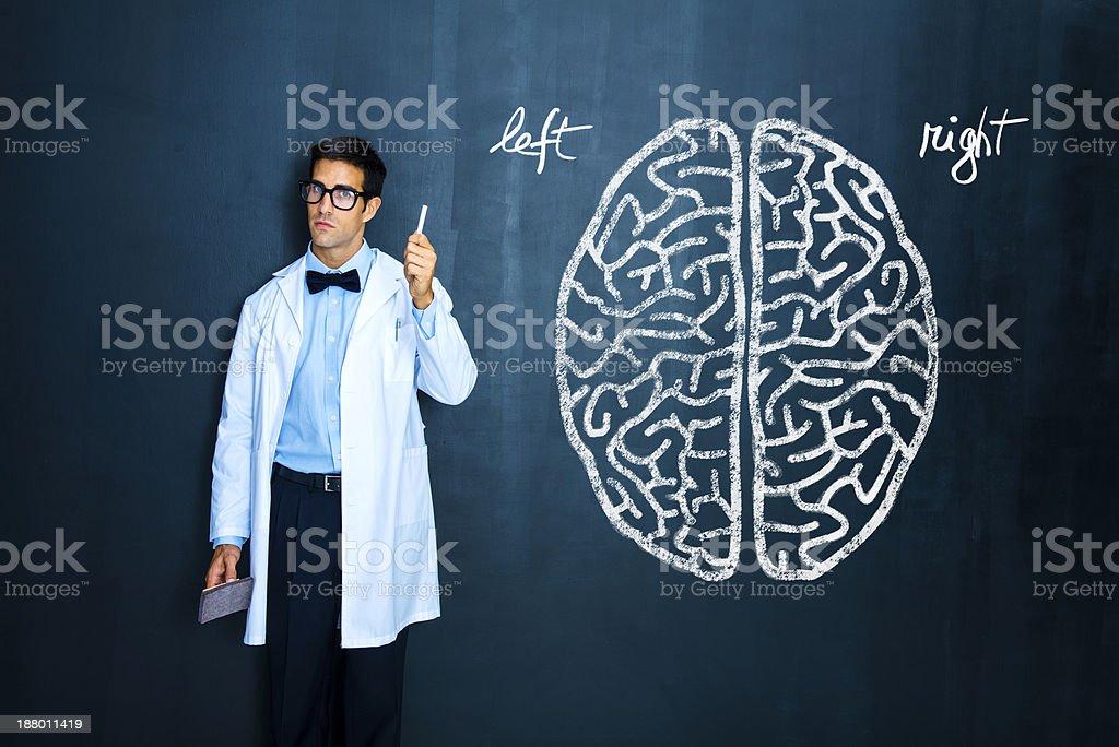 Teacher explaining human brain stock photo