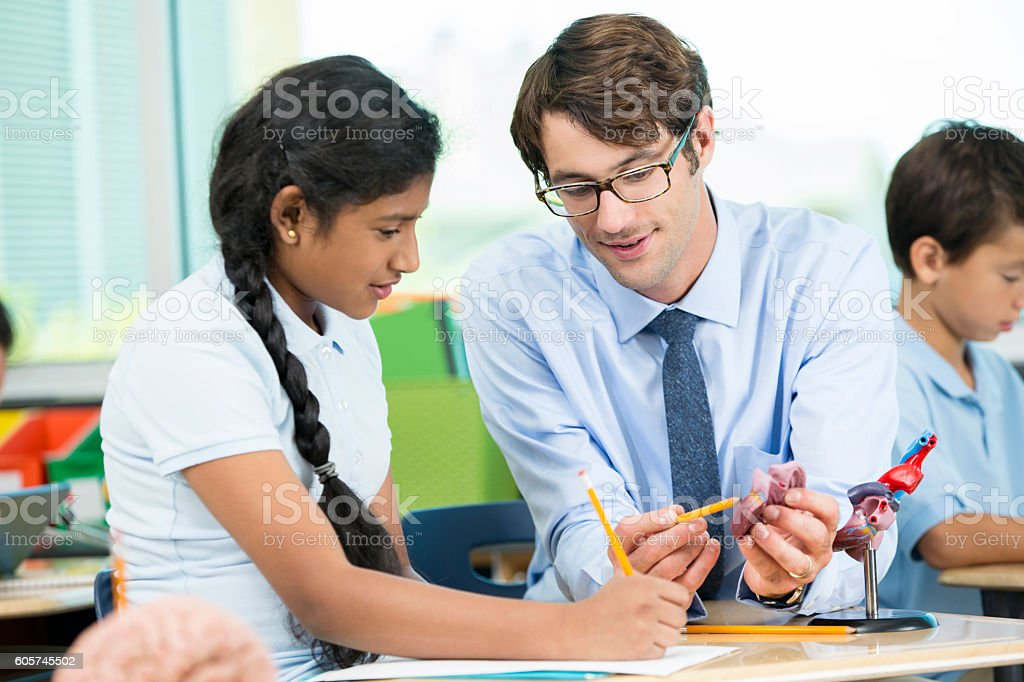 Teacher explaining the human heart to young Indian student. stock photo