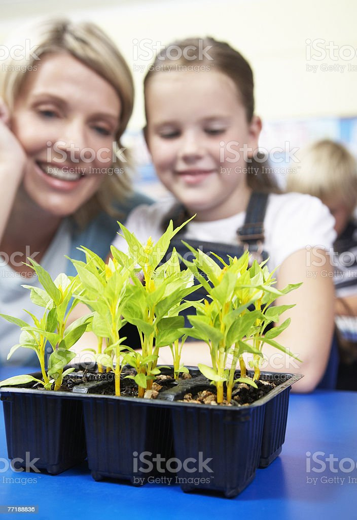 A teacher showing a student a plant royalty-free stock photo