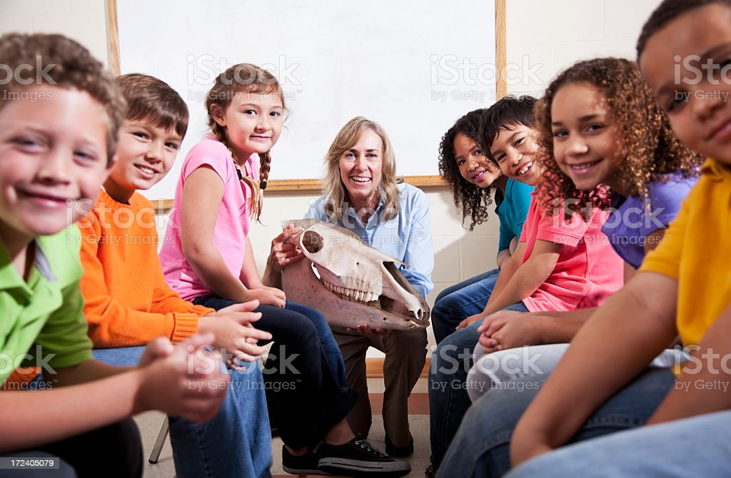 Teacher showing animal skull to students stock photo