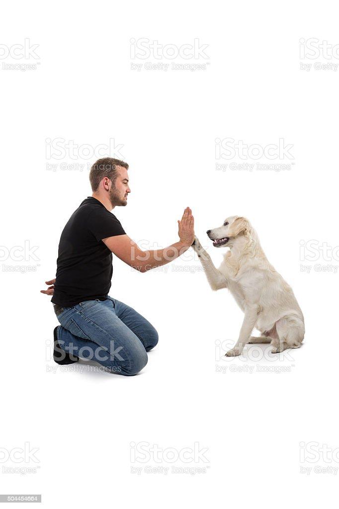 Teaching a dog new tricks stock photo