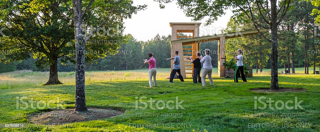 Teaching and Performing Tai Chi to Women at a Park stock photo
