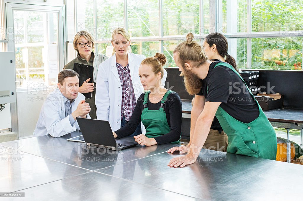 Team of scientists and greenhouse workers working on laptop stock photo