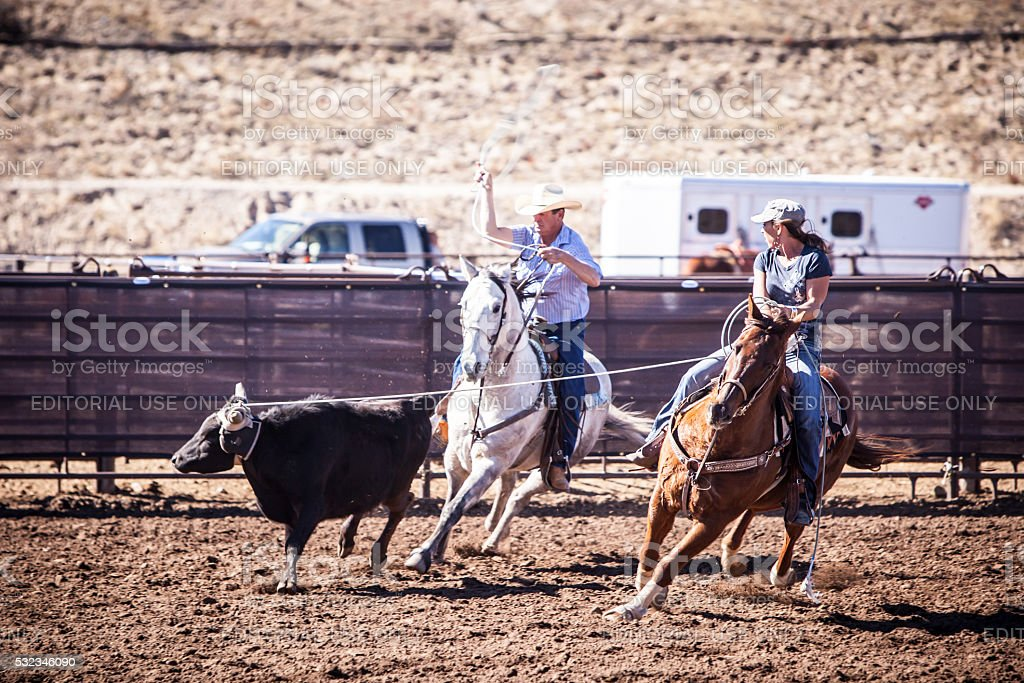 Team Roping Competition stock photo