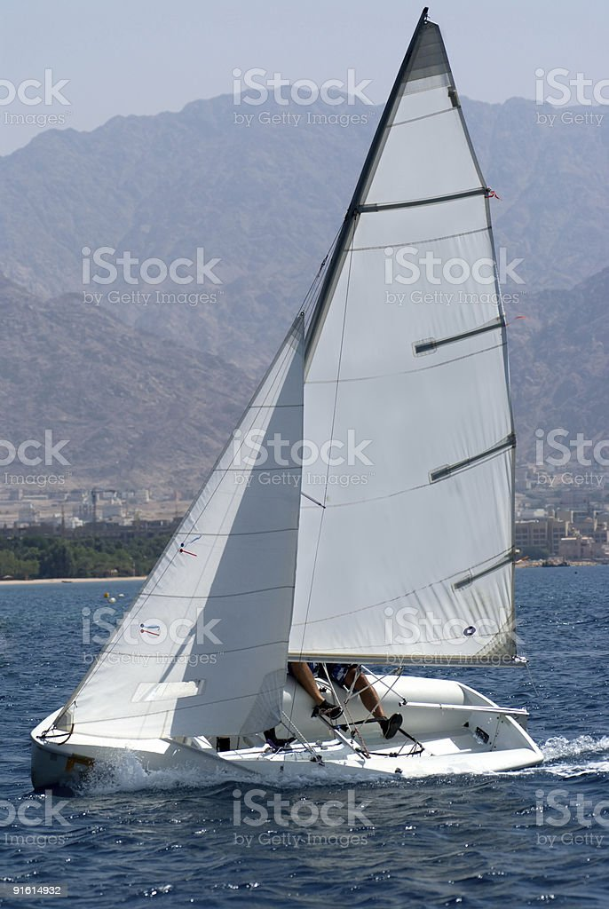 Team sailing on a small sail boat  royalty-free stock photo