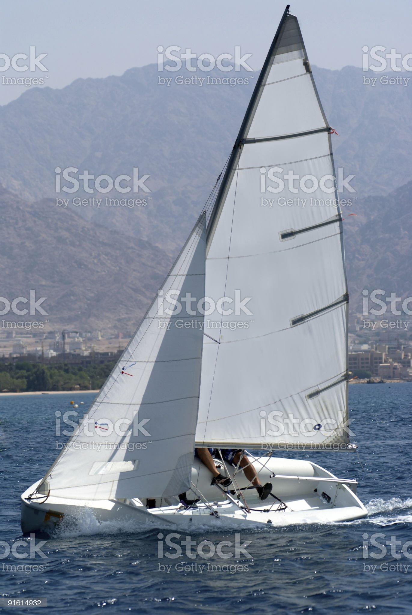 Team sailing on a small sail boat  royalty-free stock photo