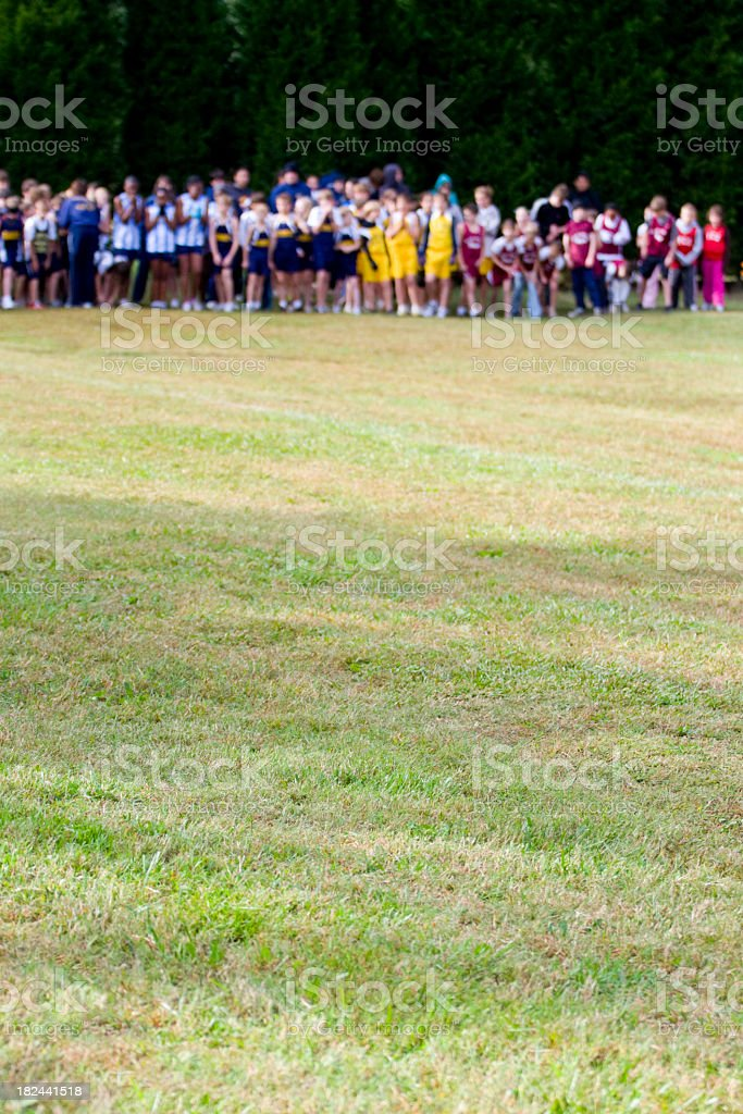 Teams lined up at a Cross Country Meet stock photo