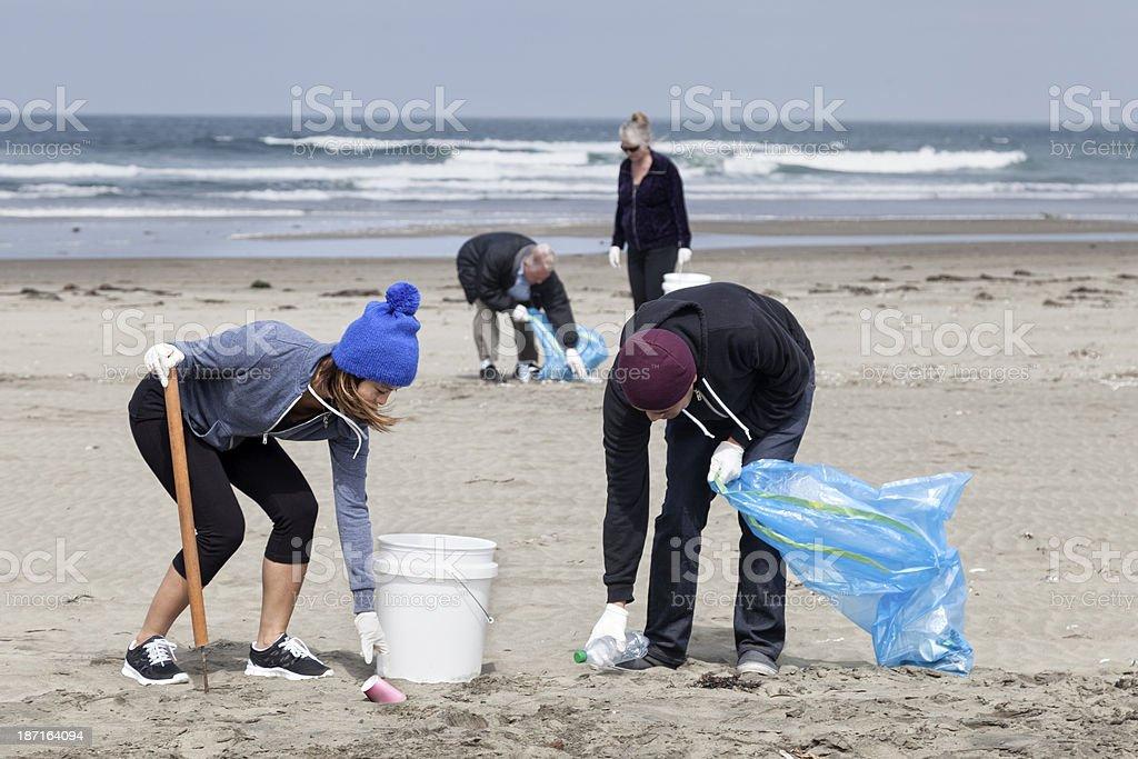Teamwork: Beach Cleanup royalty-free stock photo