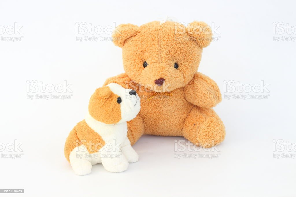 Teddy Bear and brown dog dolls, brown ears on a white background. stock photo
