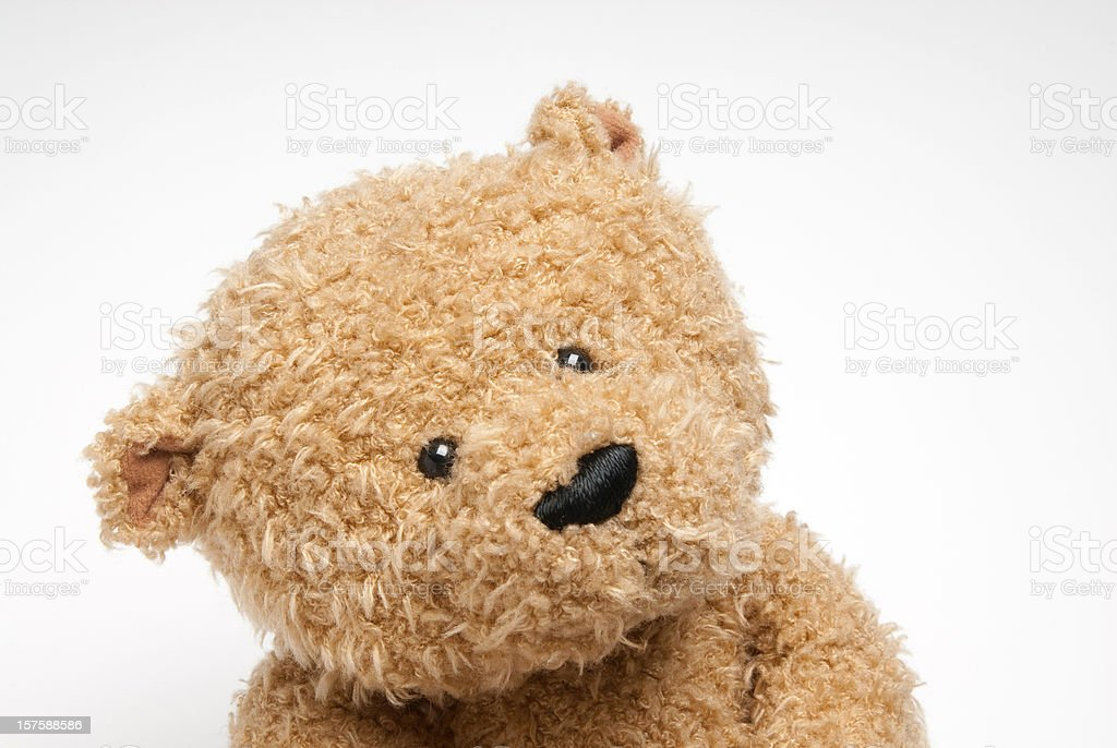 Teddy Bear Close Up royalty-free stock photo