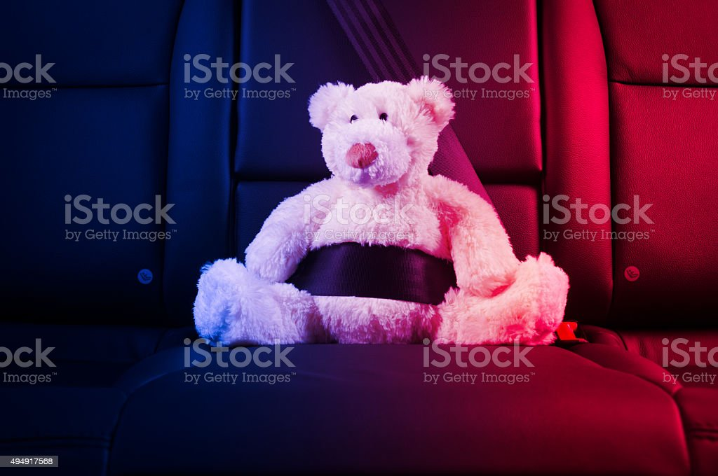 Teddy bear fastened in the back seat stock photo