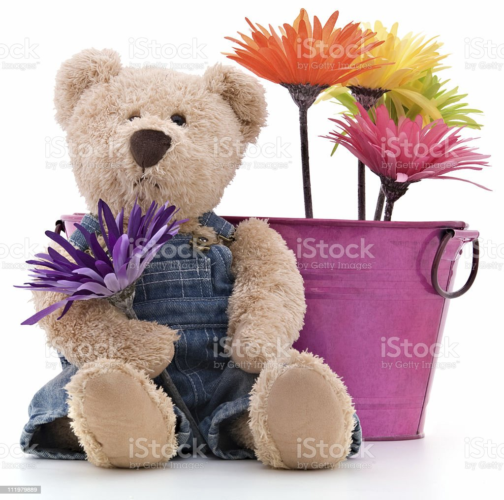 Teddy Bear Gardener royalty-free stock photo