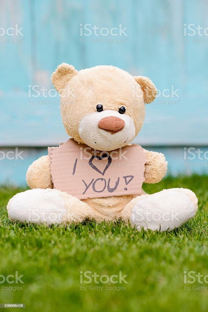 Teddy bear holding cardboard with information I love you stock photo