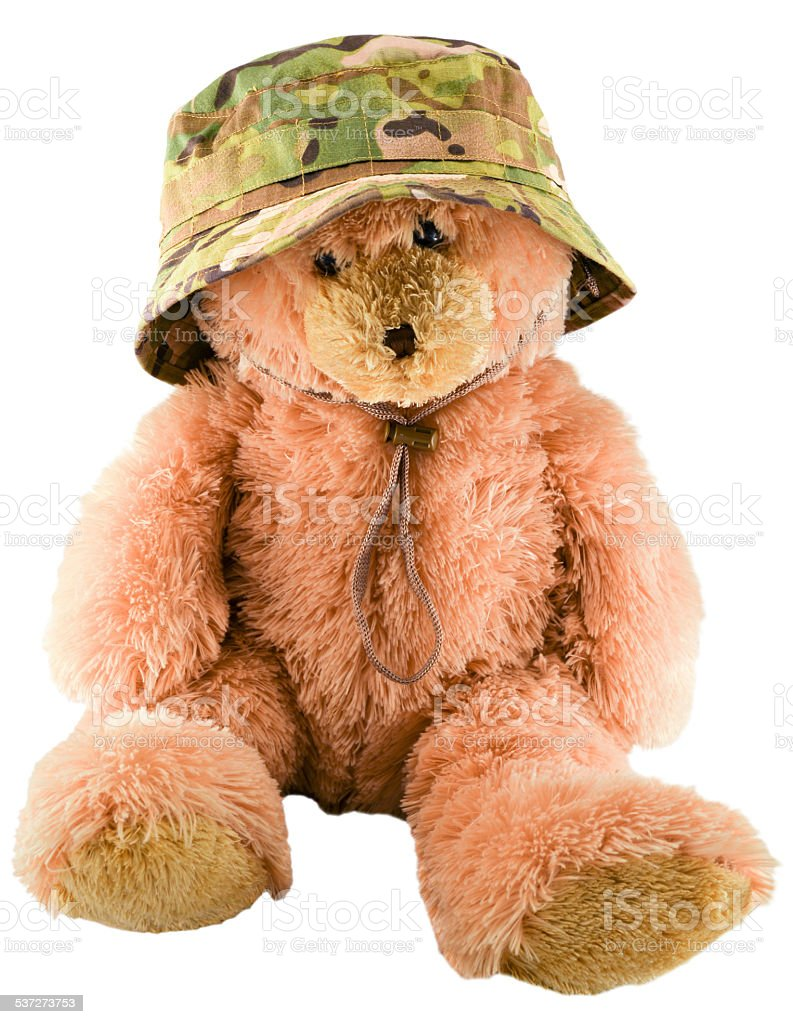 Teddy bear in a military hat stock photo