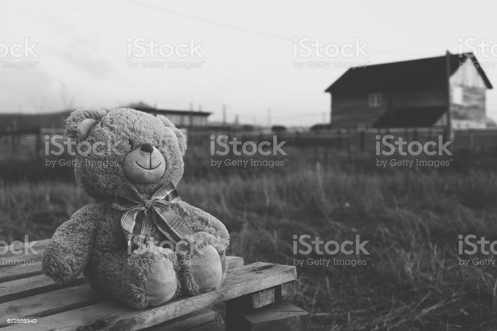 Teddy bear in countryside. Black and white toned image stock photo