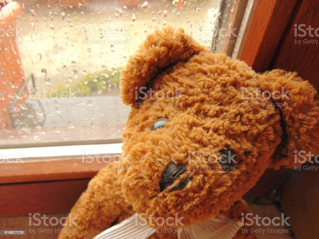rainy day with teddy bear sitting in front of the window