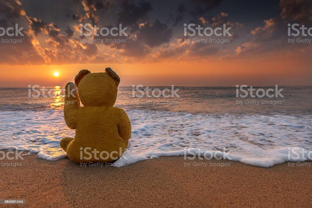 teddy bear in the sunset. stock photo