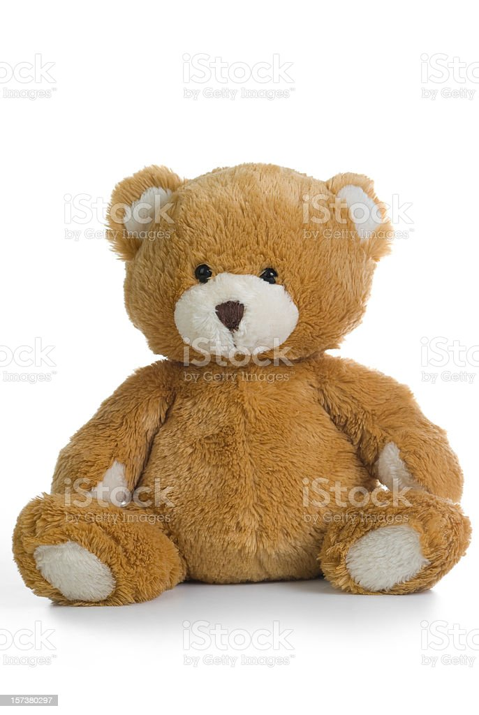 A teddy bear isolated on a white background stock photo