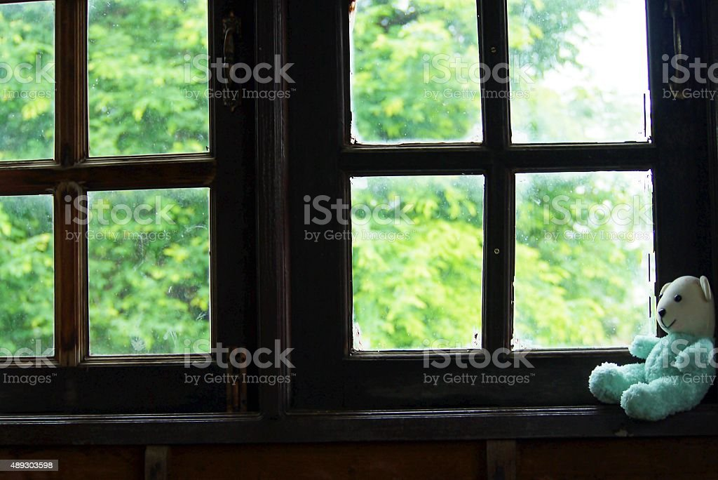 teddy bear near window. stock photo