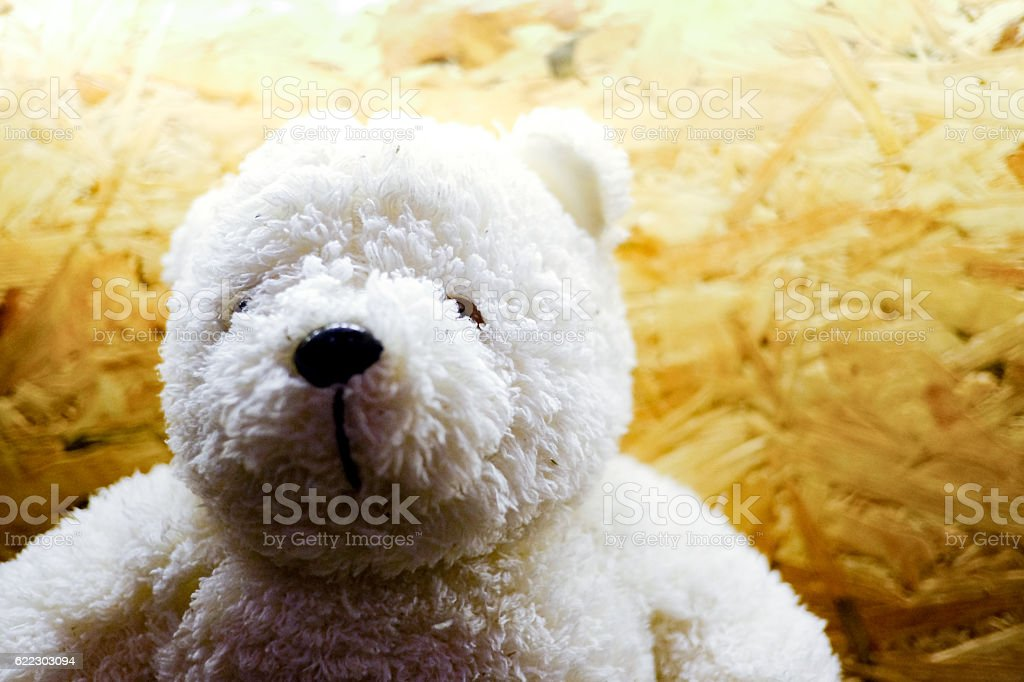 teddy Bear on wood background,vintage tone, concept copyspace, p stock photo