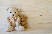Teddy Bear on wooden floor