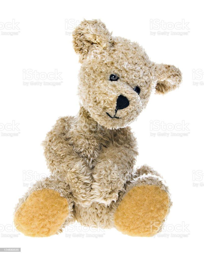 Teddy Bear royalty-free stock photo