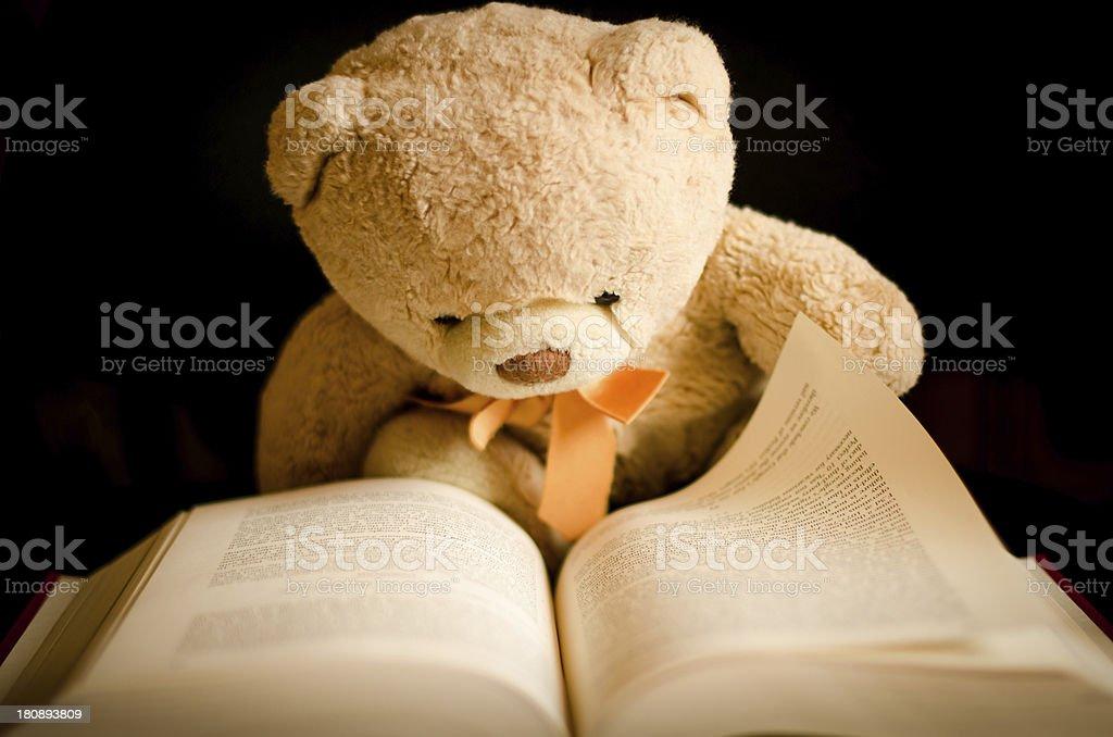 Teddy Bear Reading in a Book stock photo