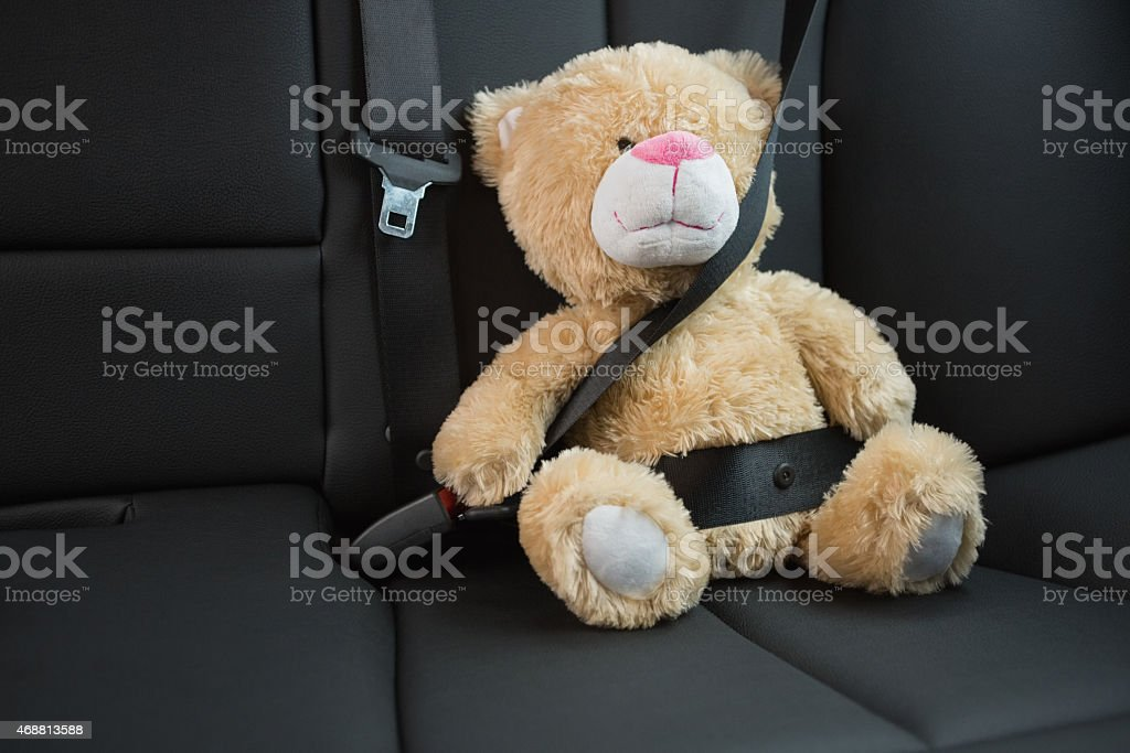 Teddy bear strapped in with seat belt stock photo
