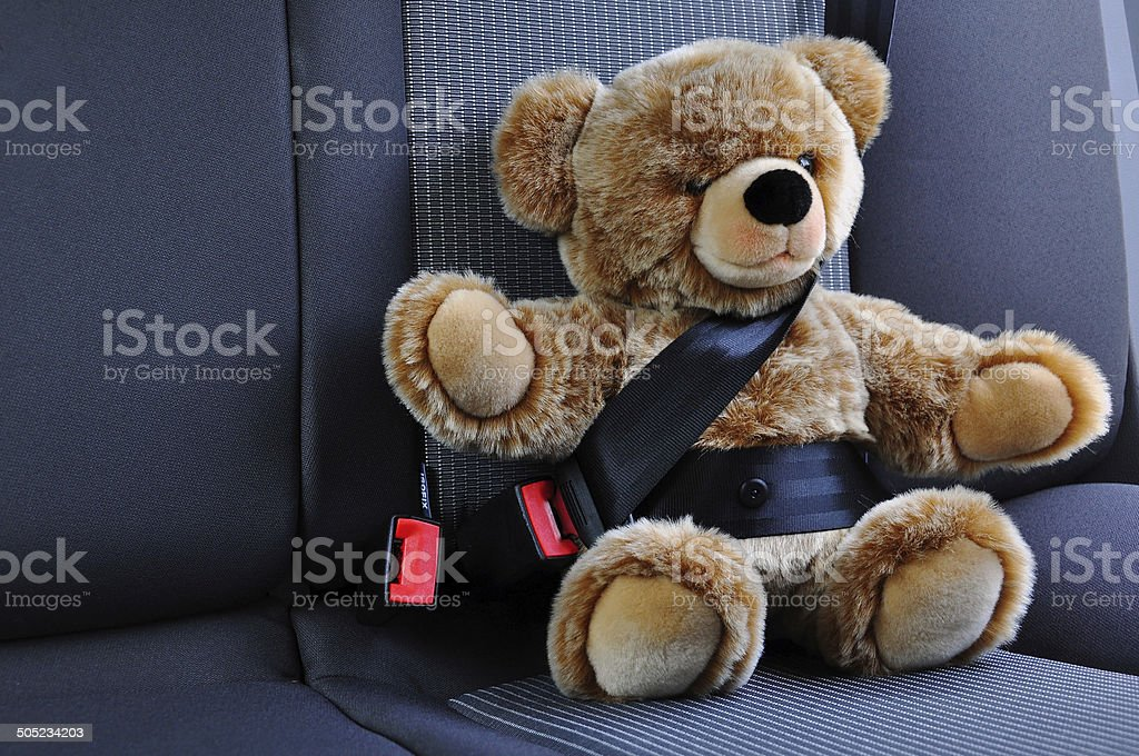 Teddy bear wearing seatbelt stock photo