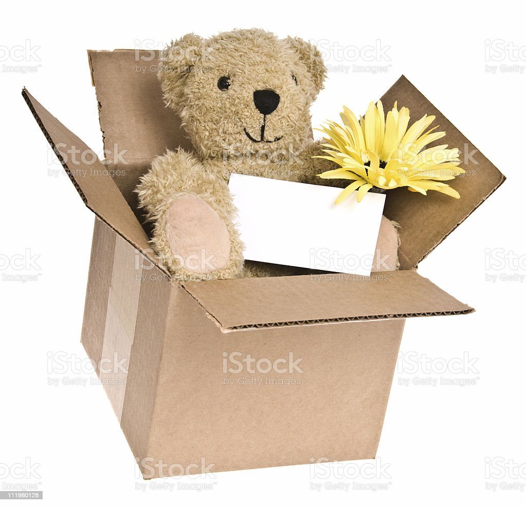 Teddy Bear with Blank Note and Flower royalty-free stock photo