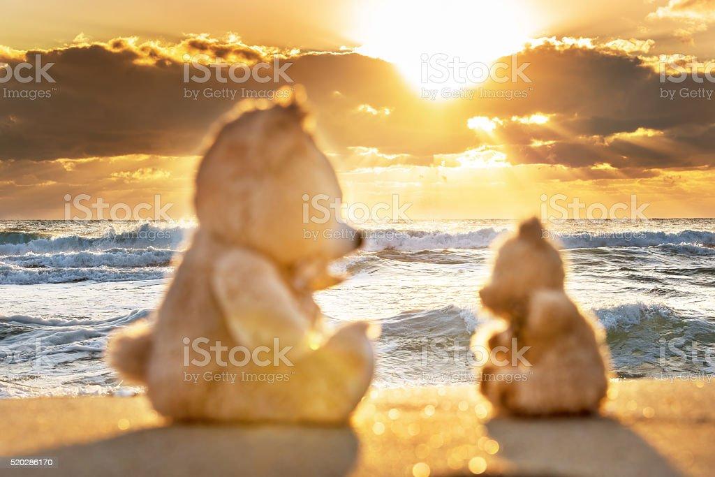 Teddy bears sitting on the beautiful beach with love. stock photo
