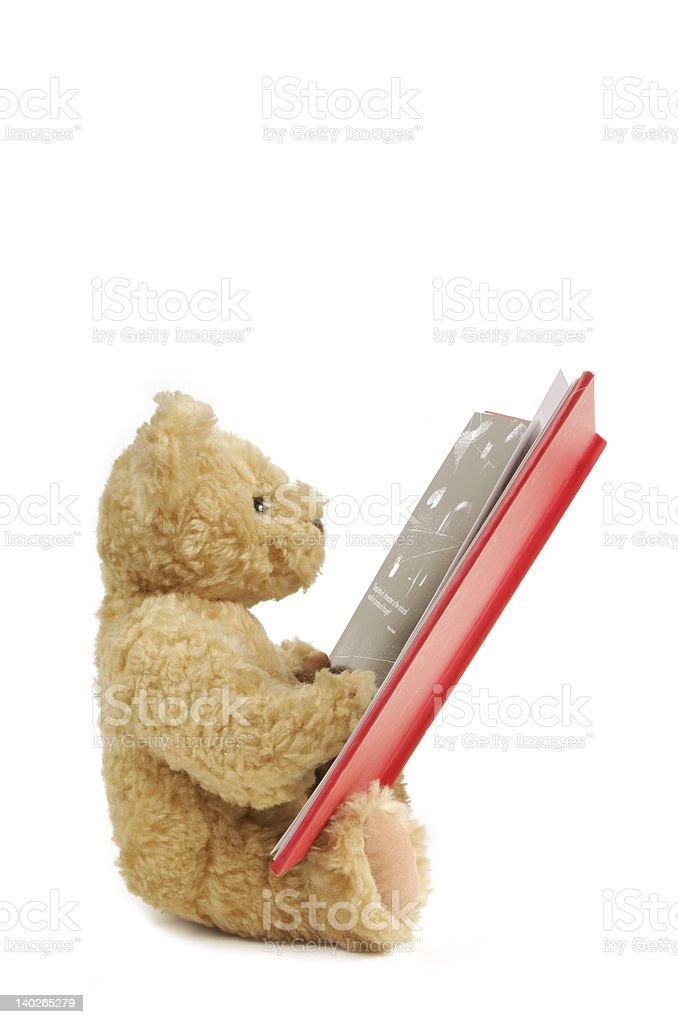 Teddy reading a big red book stock photo