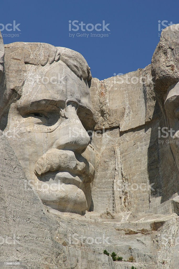 Teddy Roosevelt royalty-free stock photo