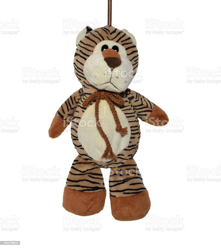 Teddy tigre foto stock royalty-free
