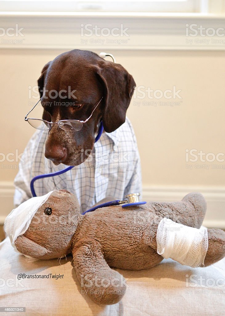 Teddy's not very well stock photo