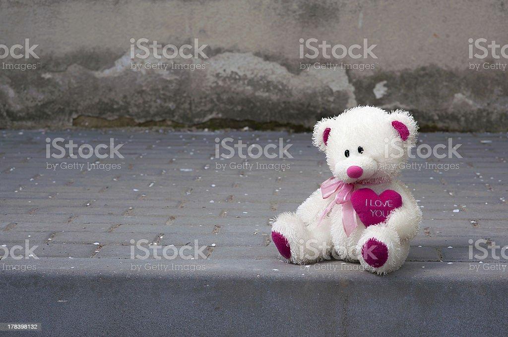 Tedy bear royalty-free stock photo