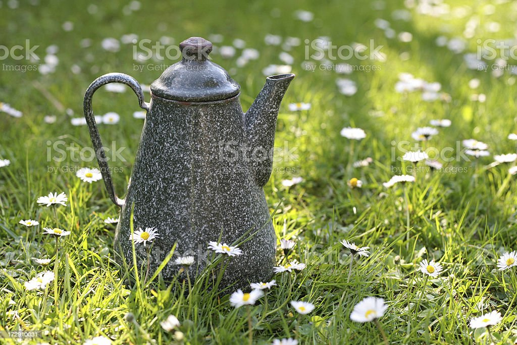 Teekanne royalty-free stock photo