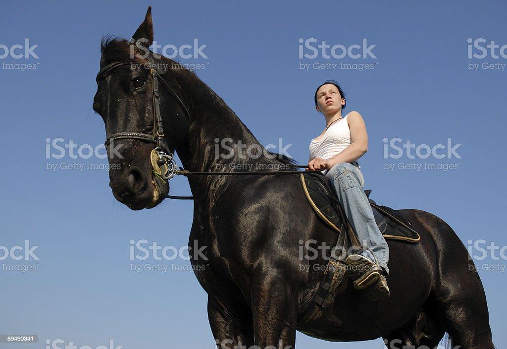 teen and stallion royalty-free stock photo
