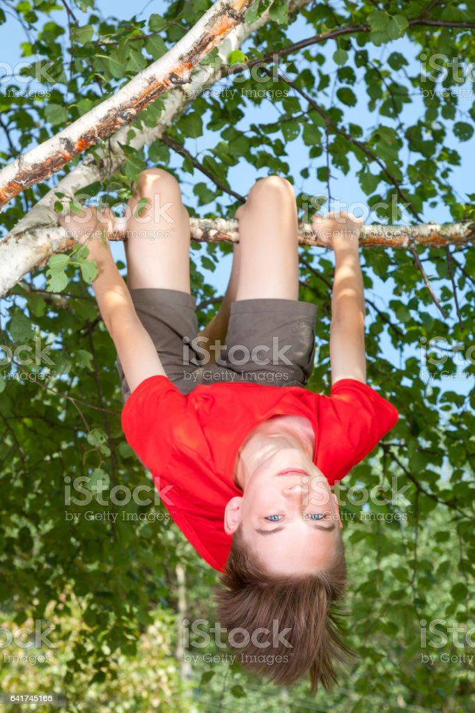 Teen boy hanging from a tree in a summer garden stock photo