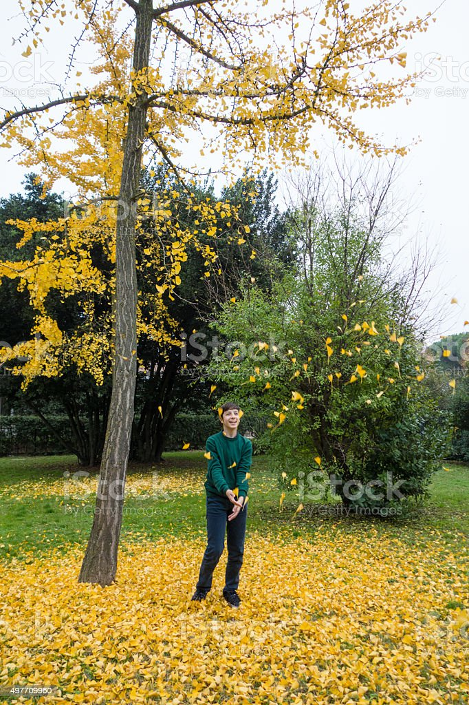 Teen Boy  Playing with Leaves stock photo