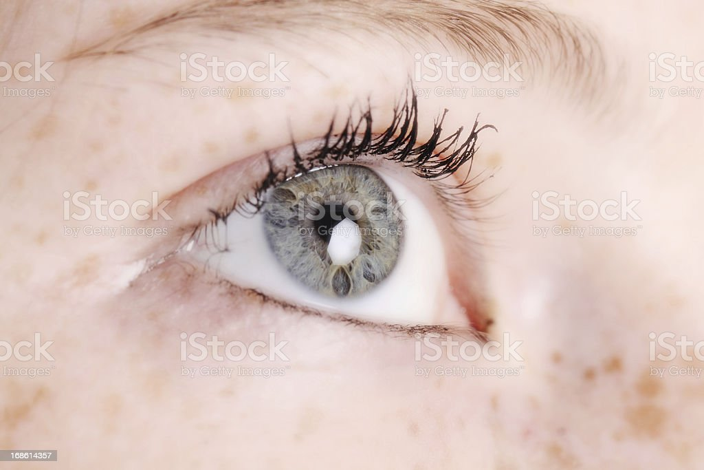 Teen Eye royalty-free stock photo