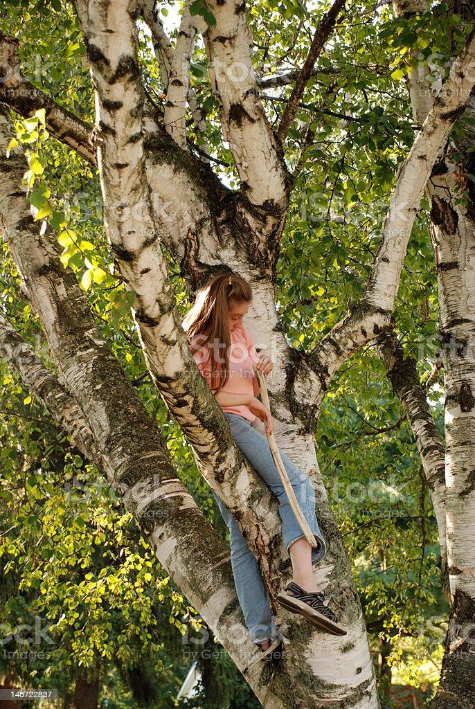 Teen in Tree royalty-free stock photo