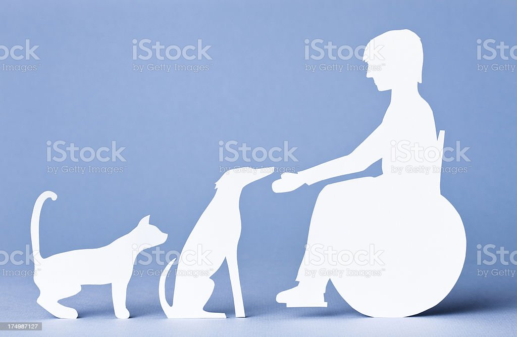 Teen in wheelchair petting dog and cat: paper concept stock photo