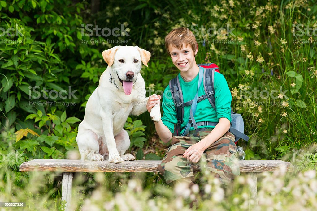 Teenage boy and his Labrador retriever stock photo