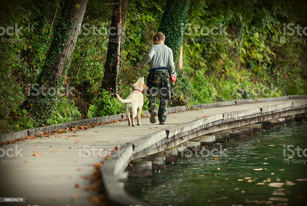 Teenage boy and his rescue dog labrador retriever stock photo