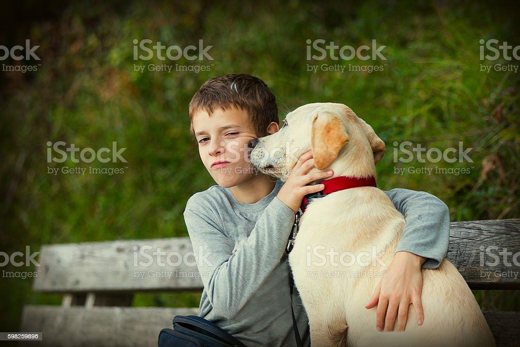 Teenage boy and his rescue dog labrador retriever stock photo