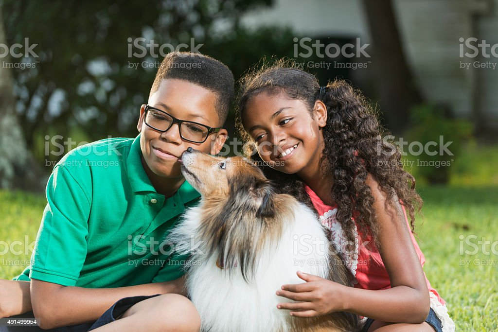 Teenage boy and sister with their dog stock photo