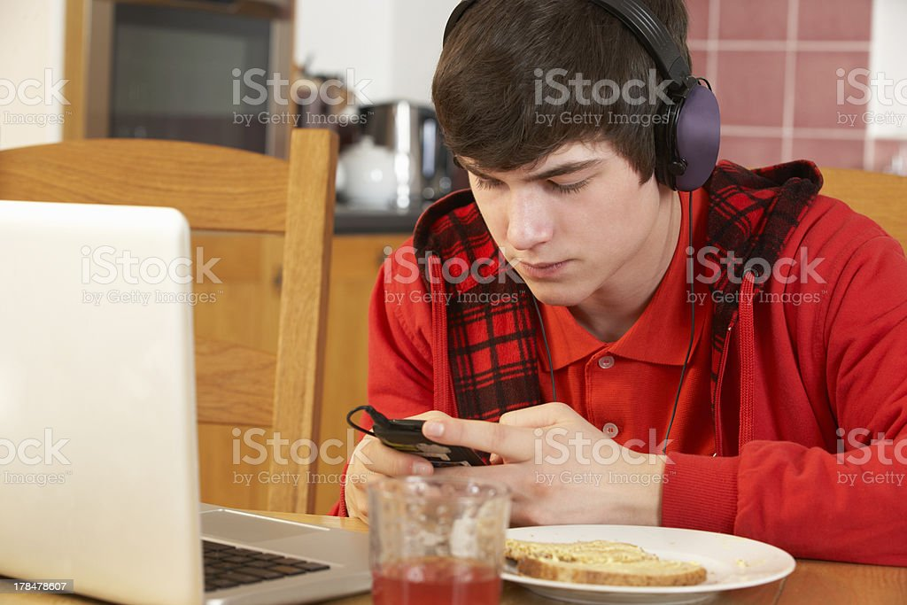 Teenage Boy Using Laptop And Listening To MP3 Player stock photo