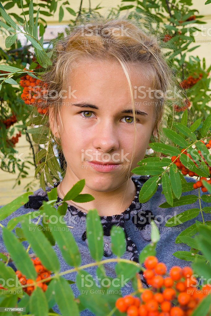 Teenage girl at the mountain ash branches. stock photo